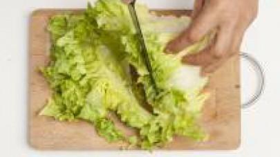 Lavate l'insalata e tagliatela a listarelle non troppo sottili; mondate e tritate finemente la cipolla.